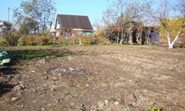 Непаханое поле - увеличить