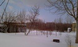 Снега в саду пока много - увеличить