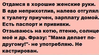 Авито знакомства девушка москва 3