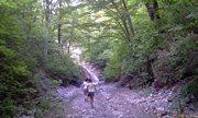 Водопад Белые скалы - подходим наконец! - увеличить