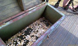 Сундук с деньгами, монетки бросили, конечно! - увеличить