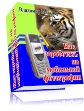 Книга Как заработать на мобильной фотографии, как увеличить фото с мобильника